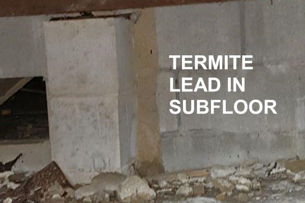 Greenhalgh Pest Termite Leads in Subfloor 2